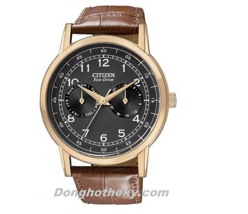 Citizen CTZ5KSvd 3501
